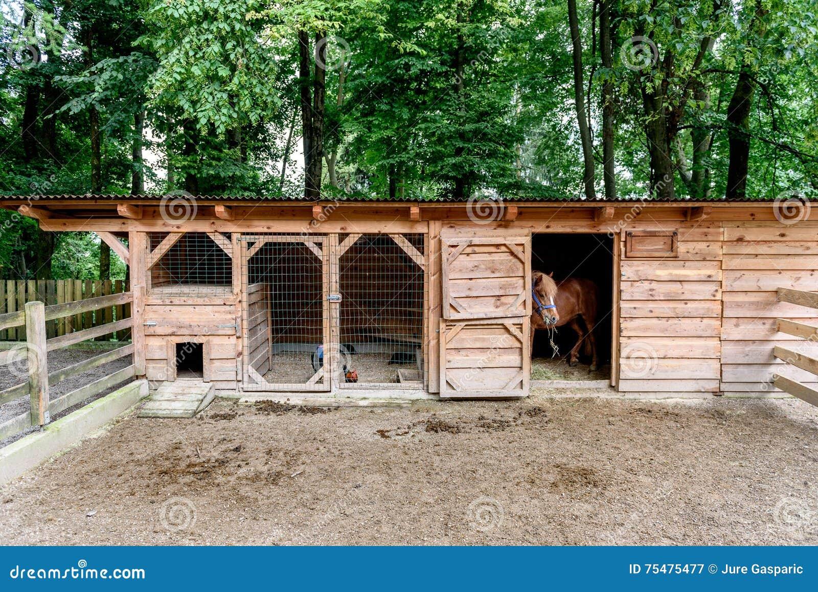Mini Kühlschrank Coop : Mini zoo mit hauptställen scheunenpferden und huhn stockbild