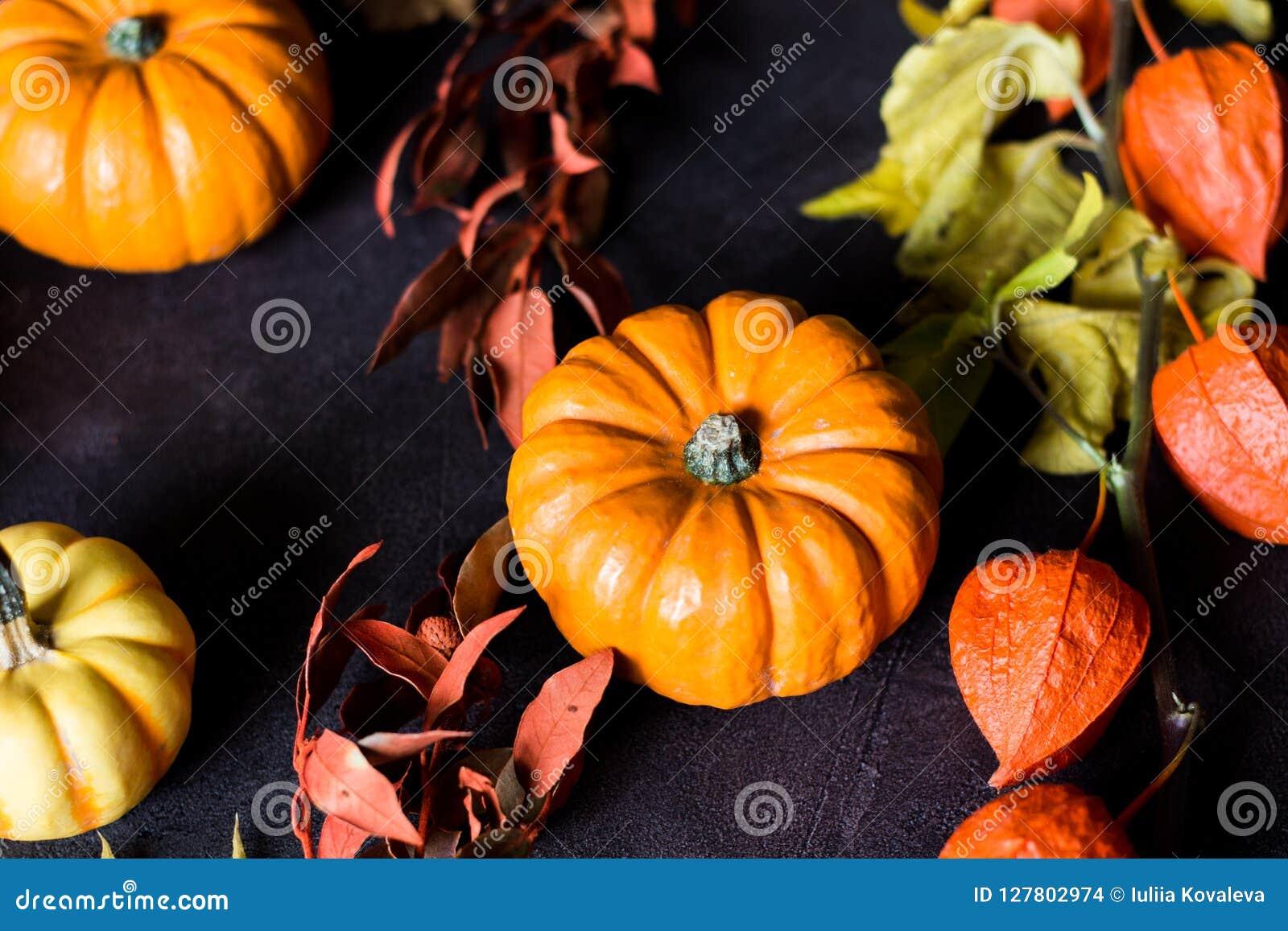 Mini zucche arancio luminose per Halloween su fondo nero
