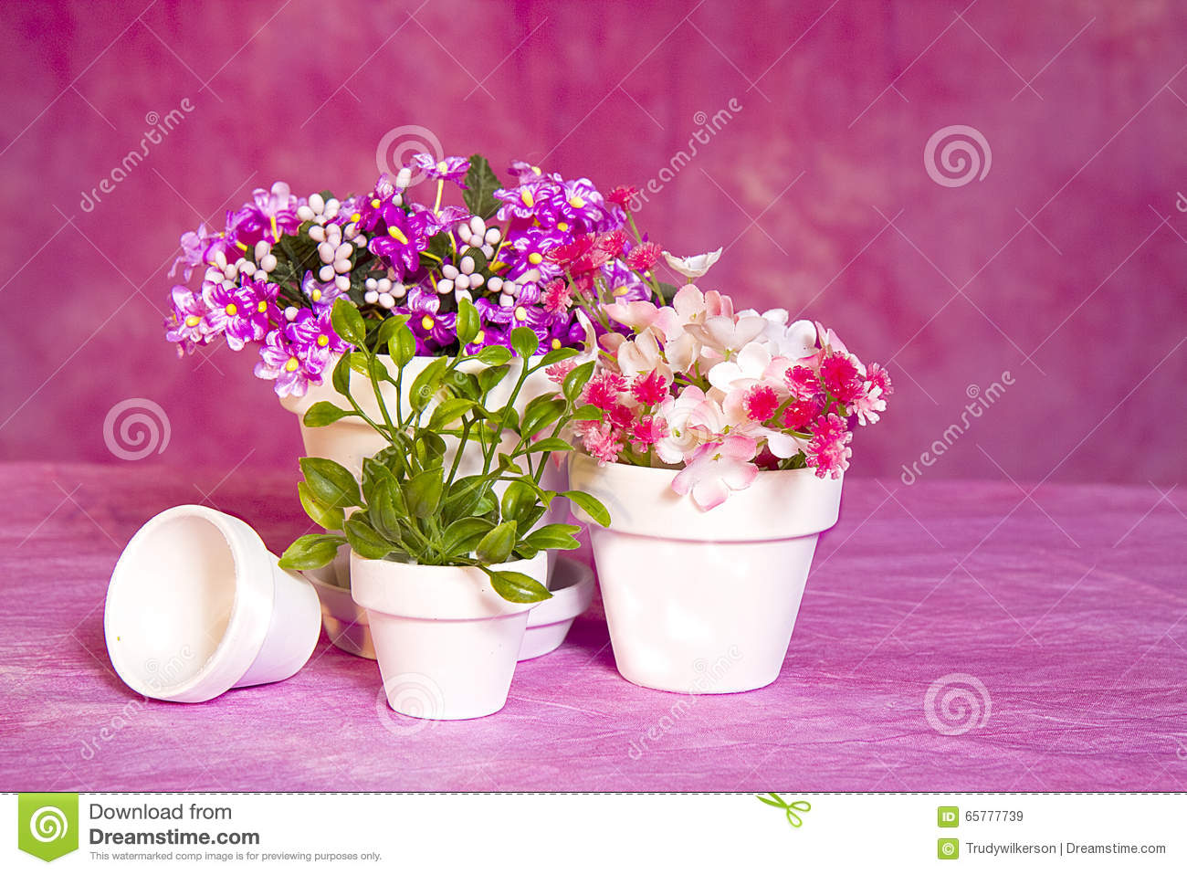 Miniature Flower Pots And Flowers Stock Image Image Of Small