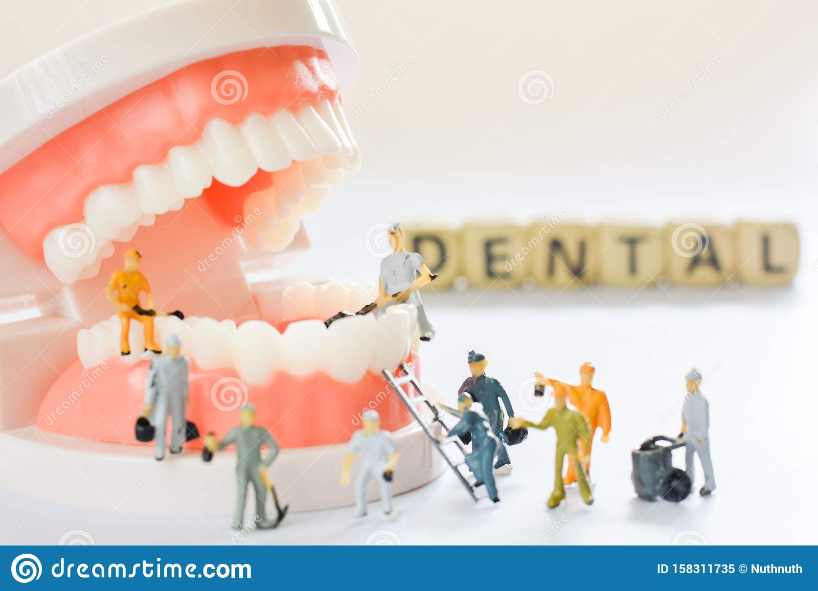 Miniature people, small model human figure clean model teeth with copy space. Medical and dental concept. Team work on dental care