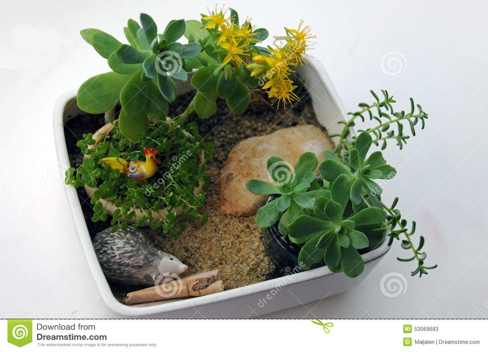 Miniature Pot Garden Stock Photo - Image 53069683