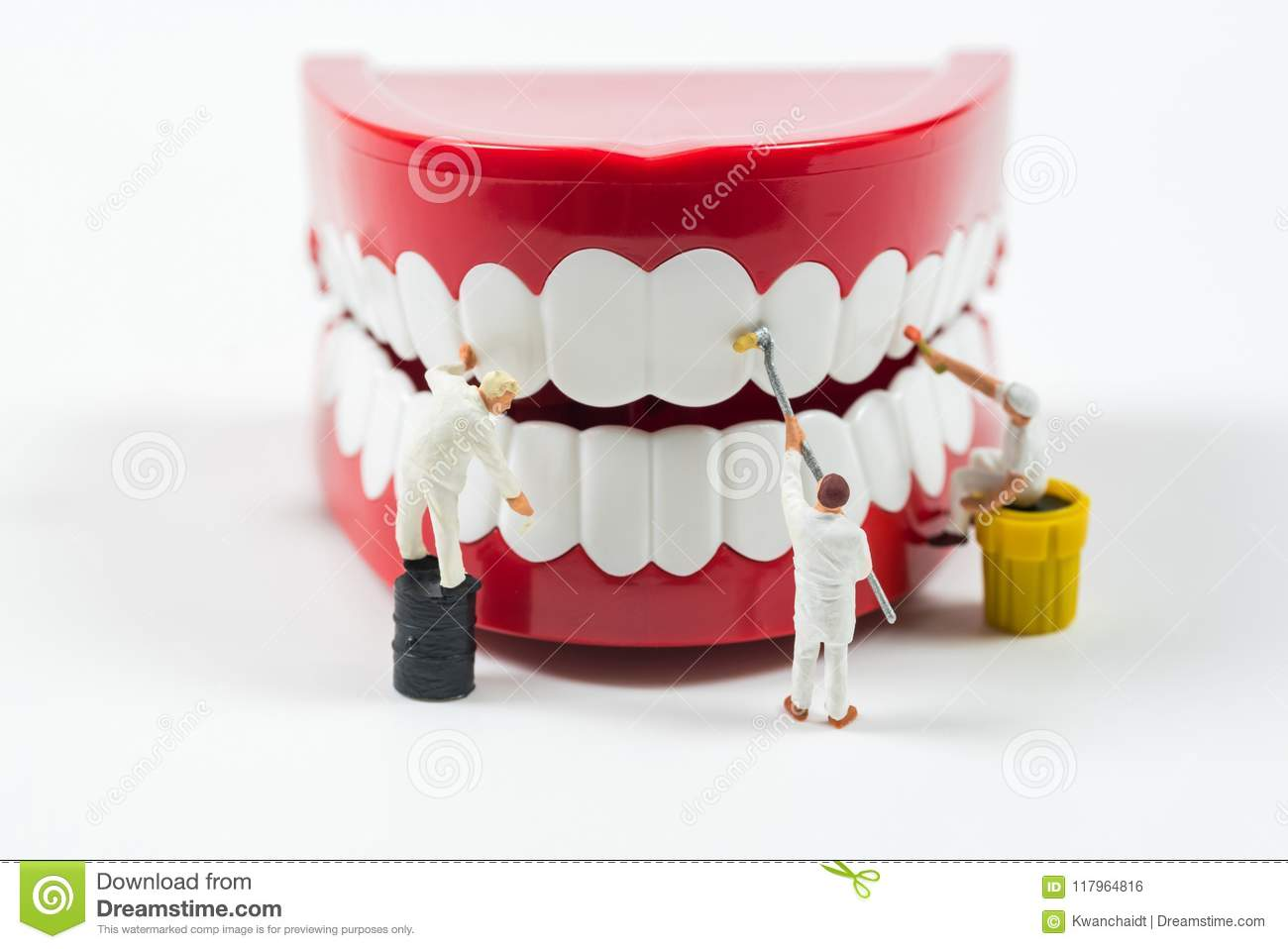 Miniature Worker People Are Cleaning Teeth Model Stock Photo