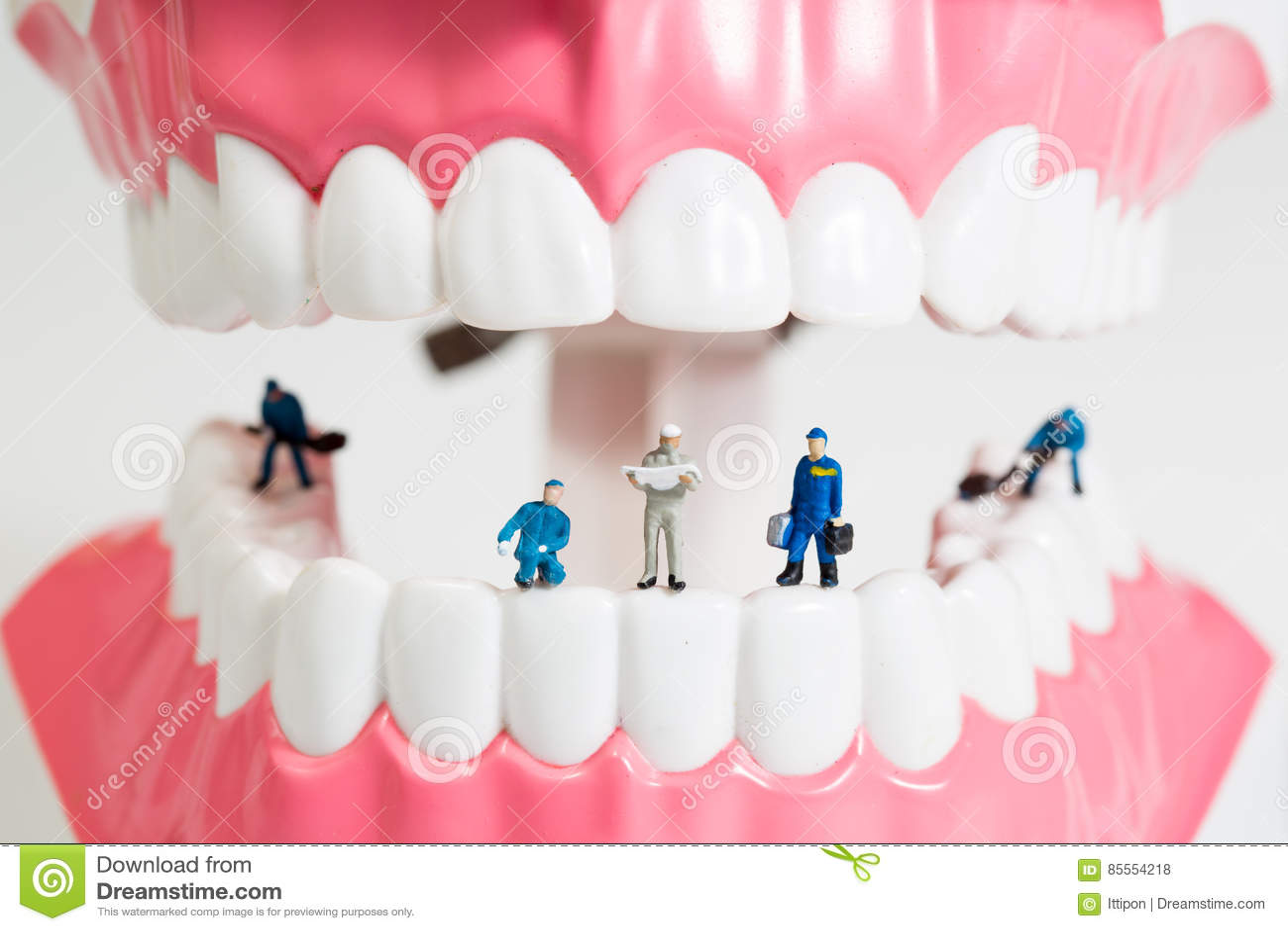 Miniaturleute zum Säubern von Zahnmodell