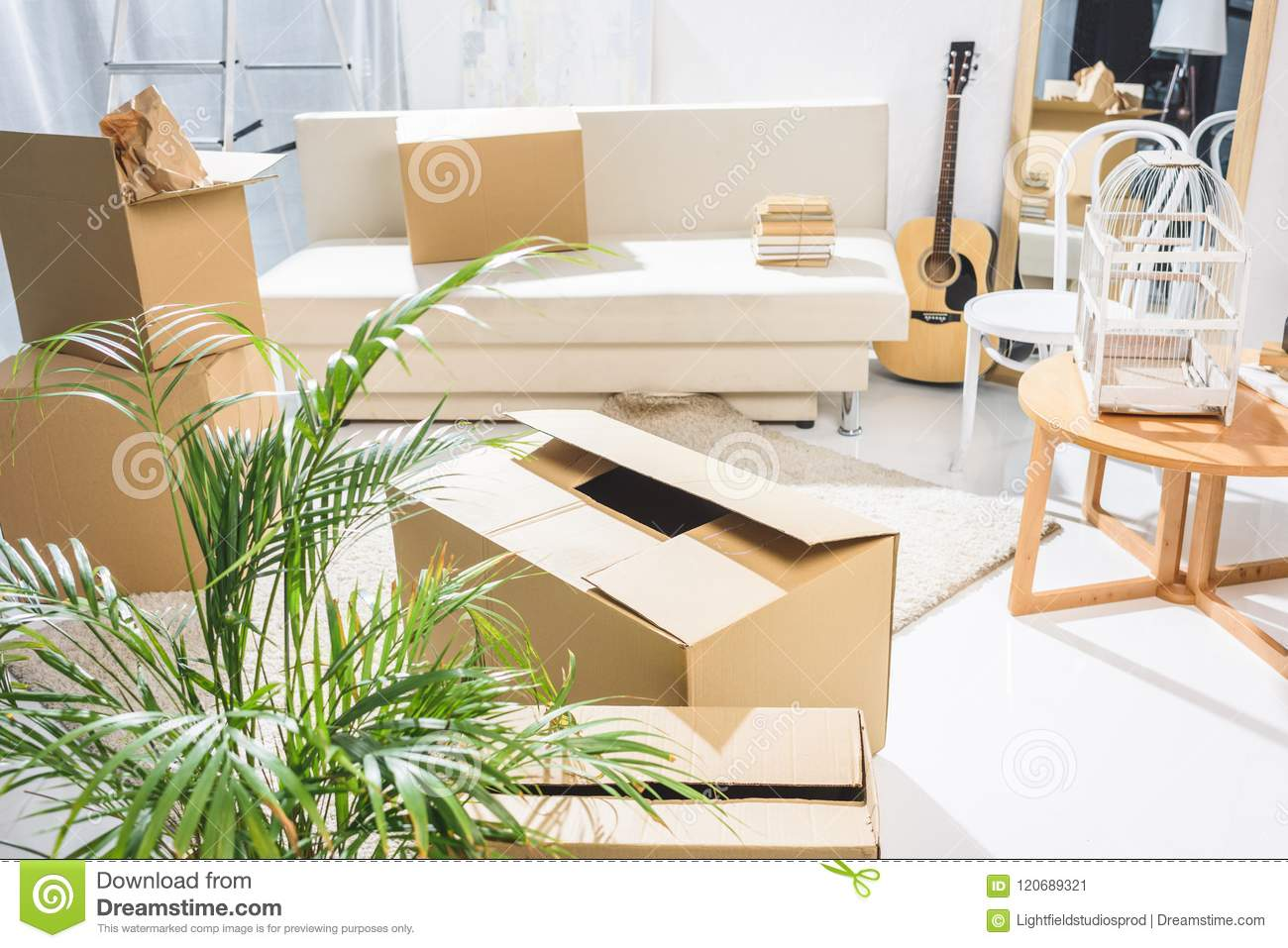 Minimalistic living room filled with moving