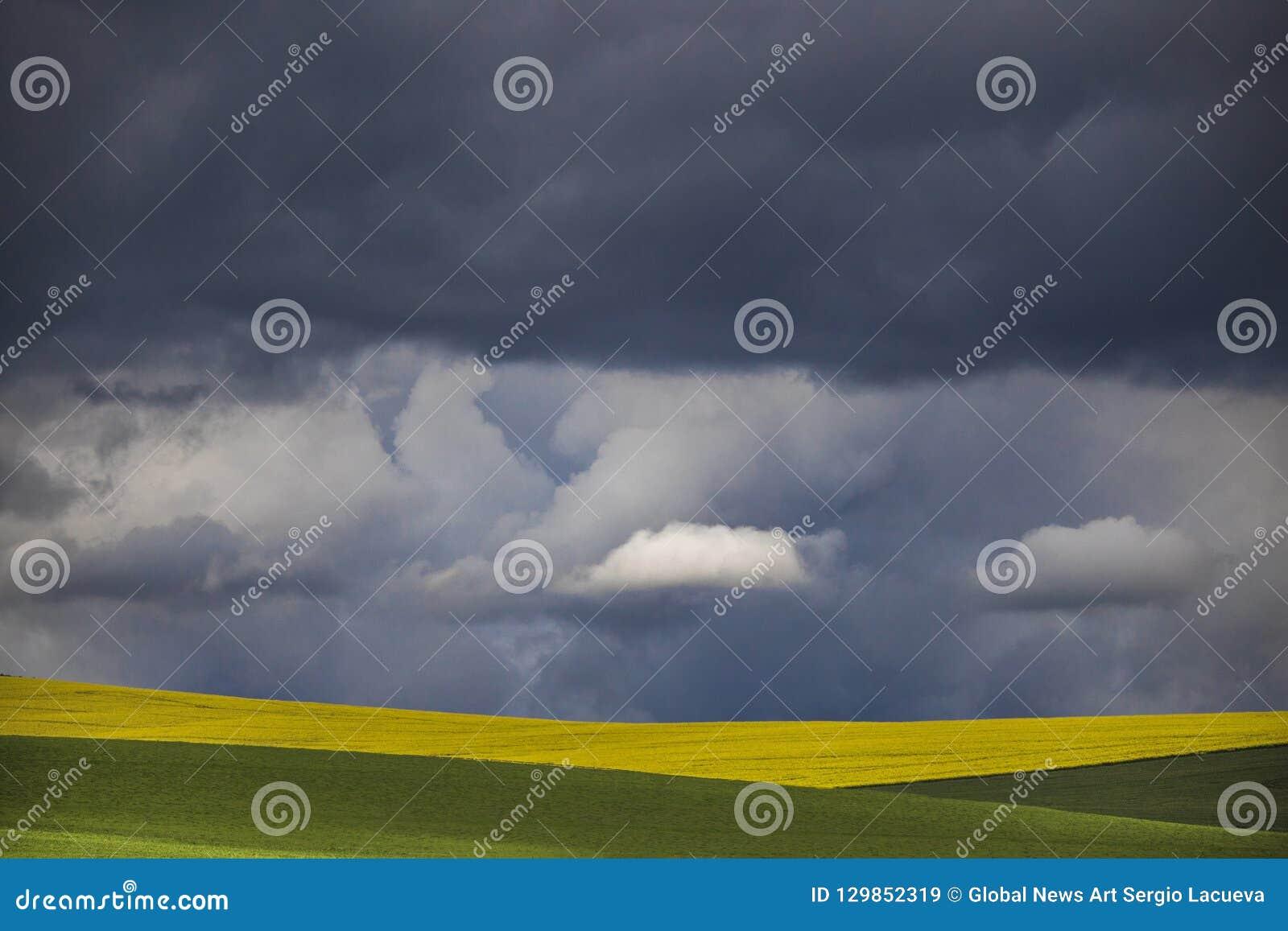 Minimalizm fotografia dramatyczne chmury nad zieleni i koloru żółtego polami