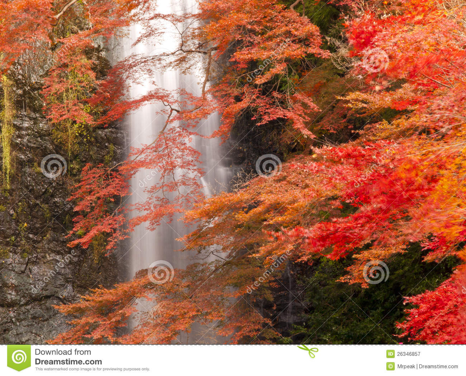 Minoh Wasserfall im Herbst