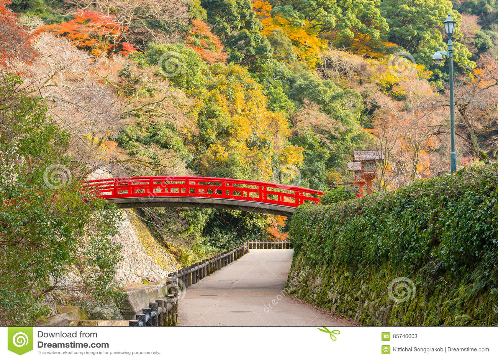 Minoo Park na estação do outono, Minoh, Osaka, Japão