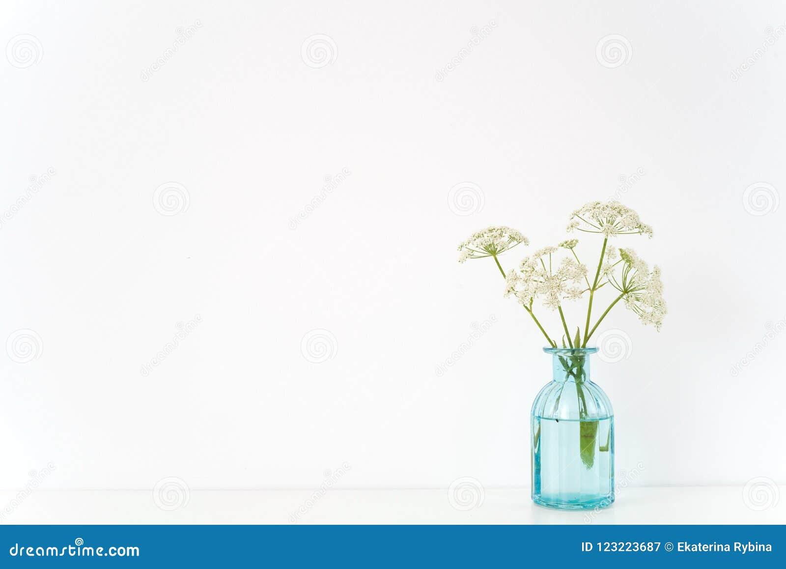 Minsta inomhus inre Genomskinlig blå vas med den Aegopodium buketten på tabellen på vit bakgrund Gulligt mjukt hem