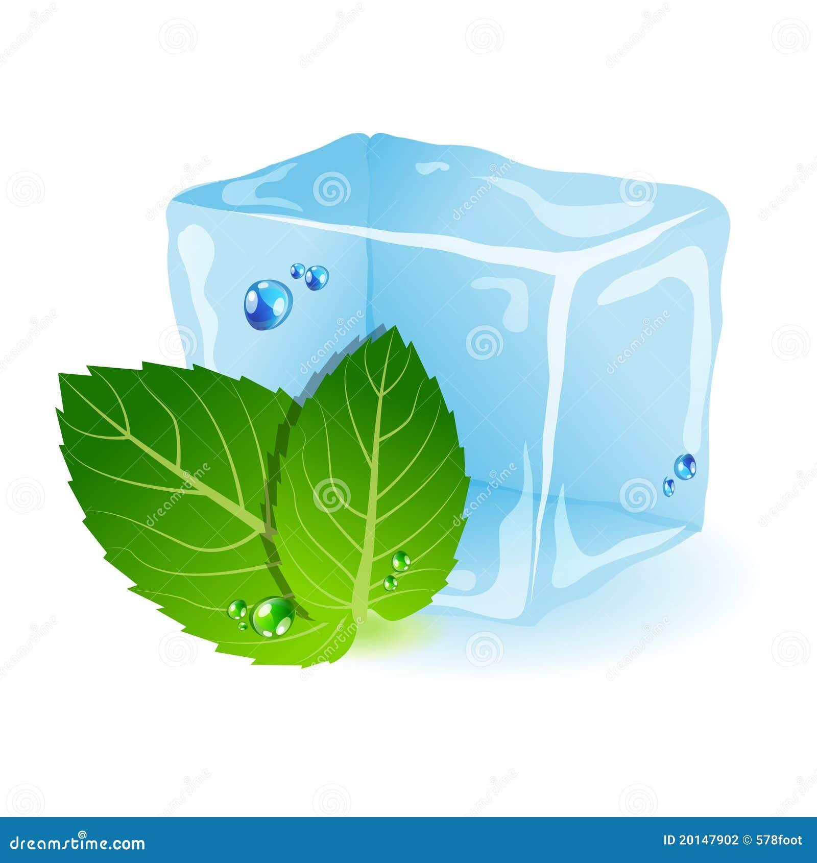 mint-ice-20147902.jpg