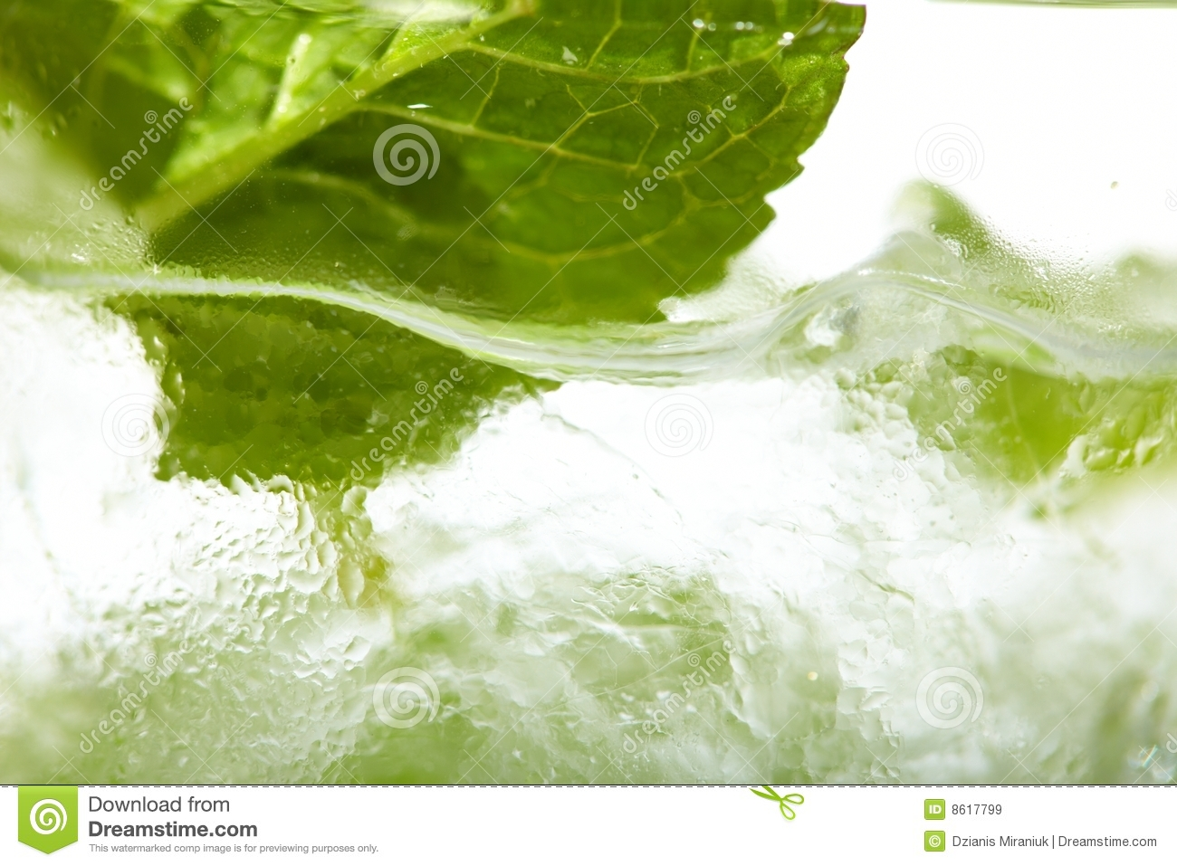 Mint Ice Vodka Royalty Free Stock Images - Image: 8617799