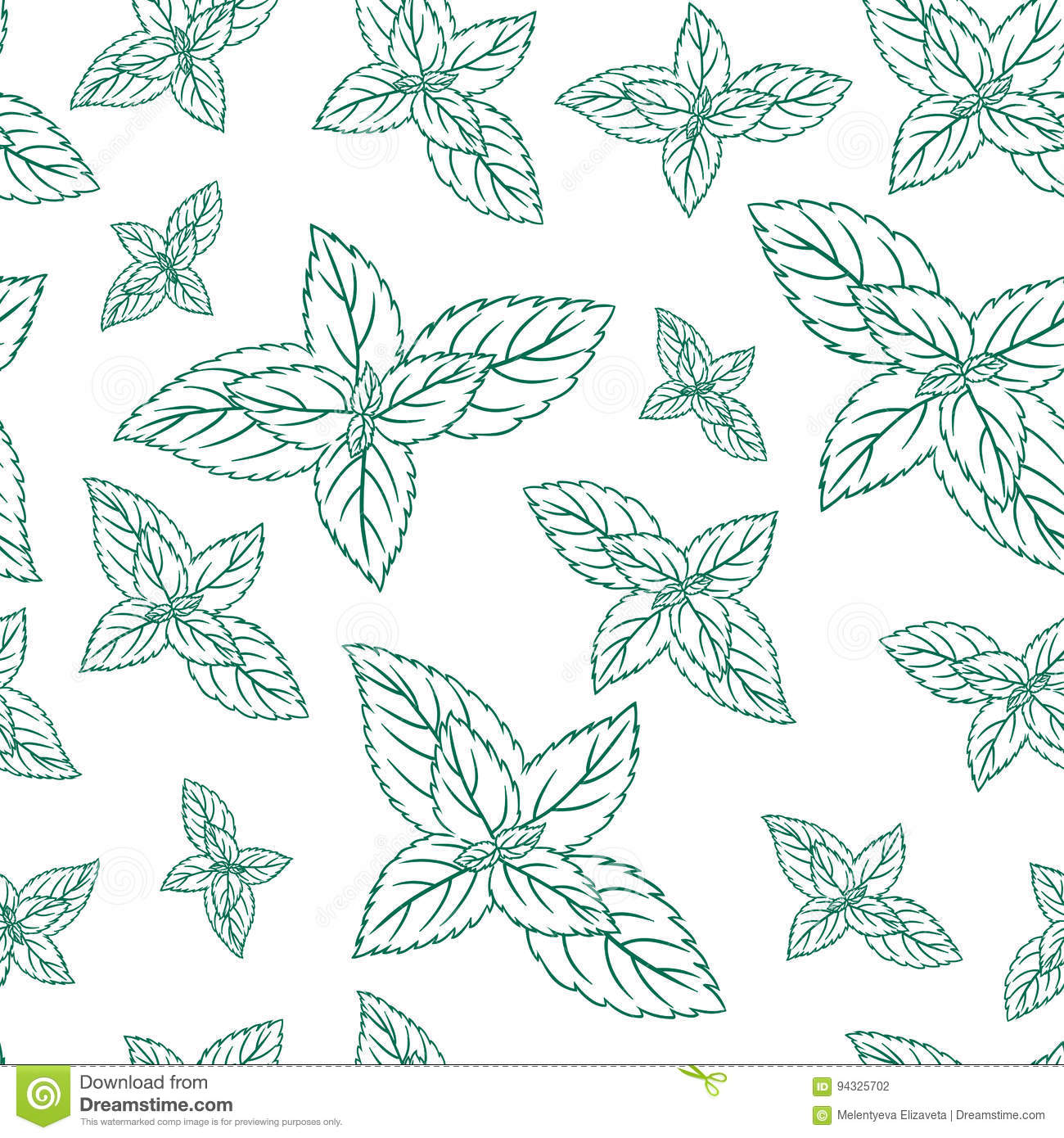 Mint Leaves, Peppermint Isolated On White Background, Hand Drawn ...