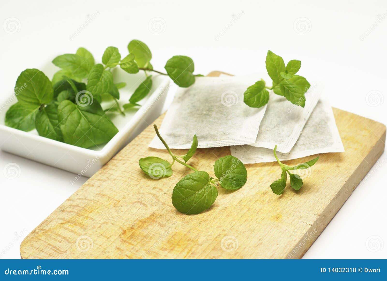 Mint tea bags and fresh mint leaves.