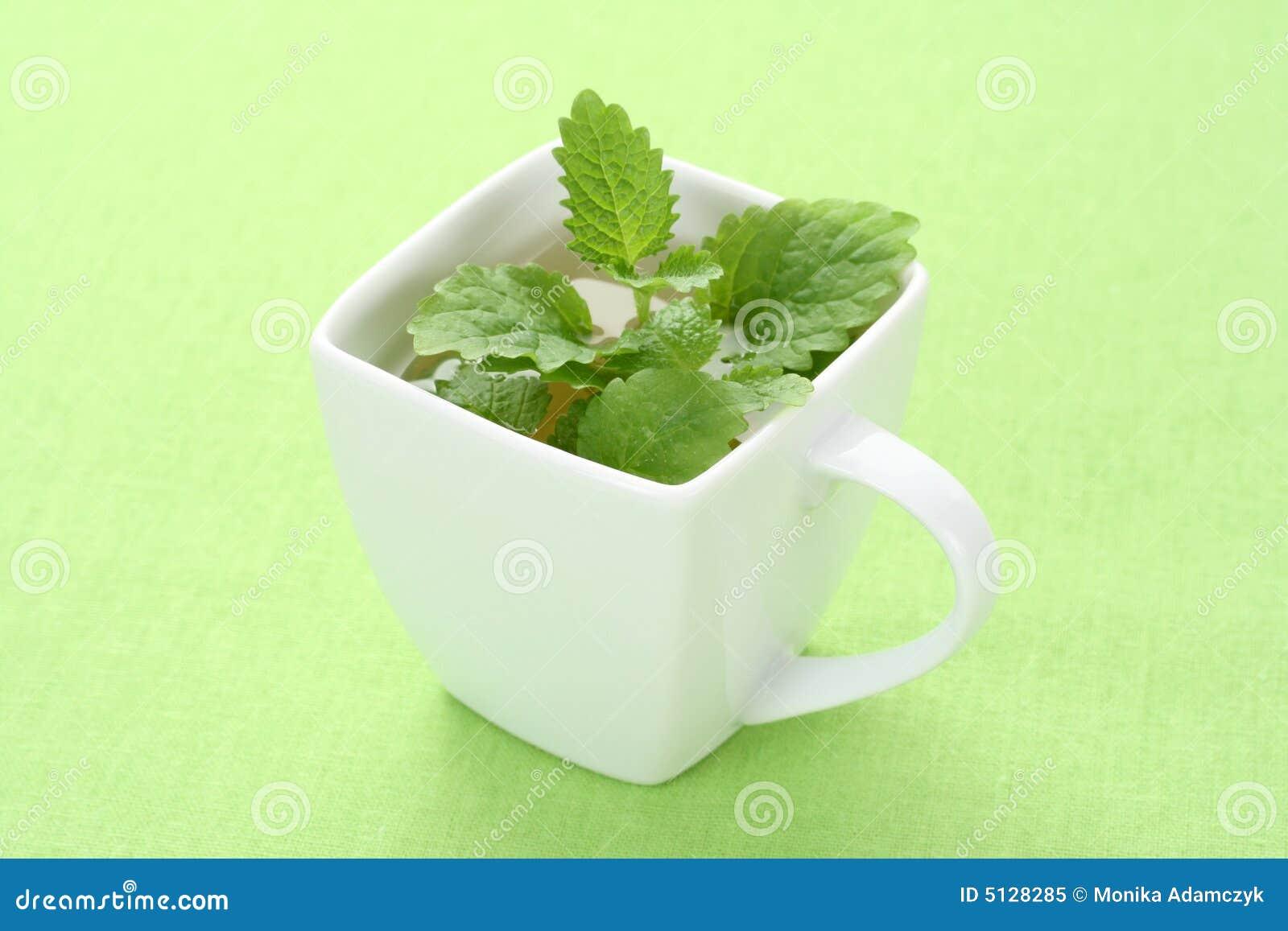 Mint Tea Royalty Free Stock Photo - Image: 5128285