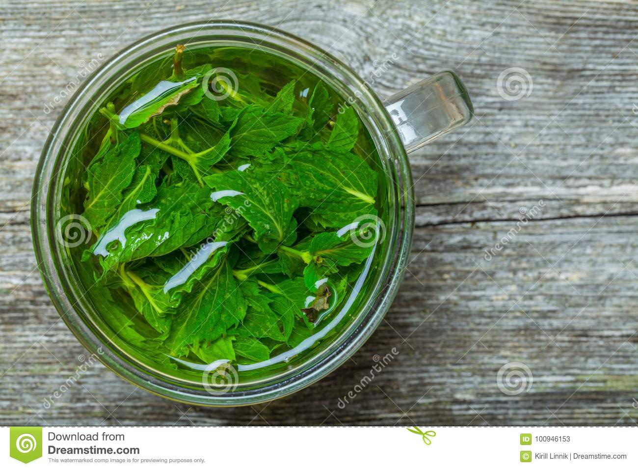 Download Mint tea on the table stock image. Image of leaf, natural - 100946153