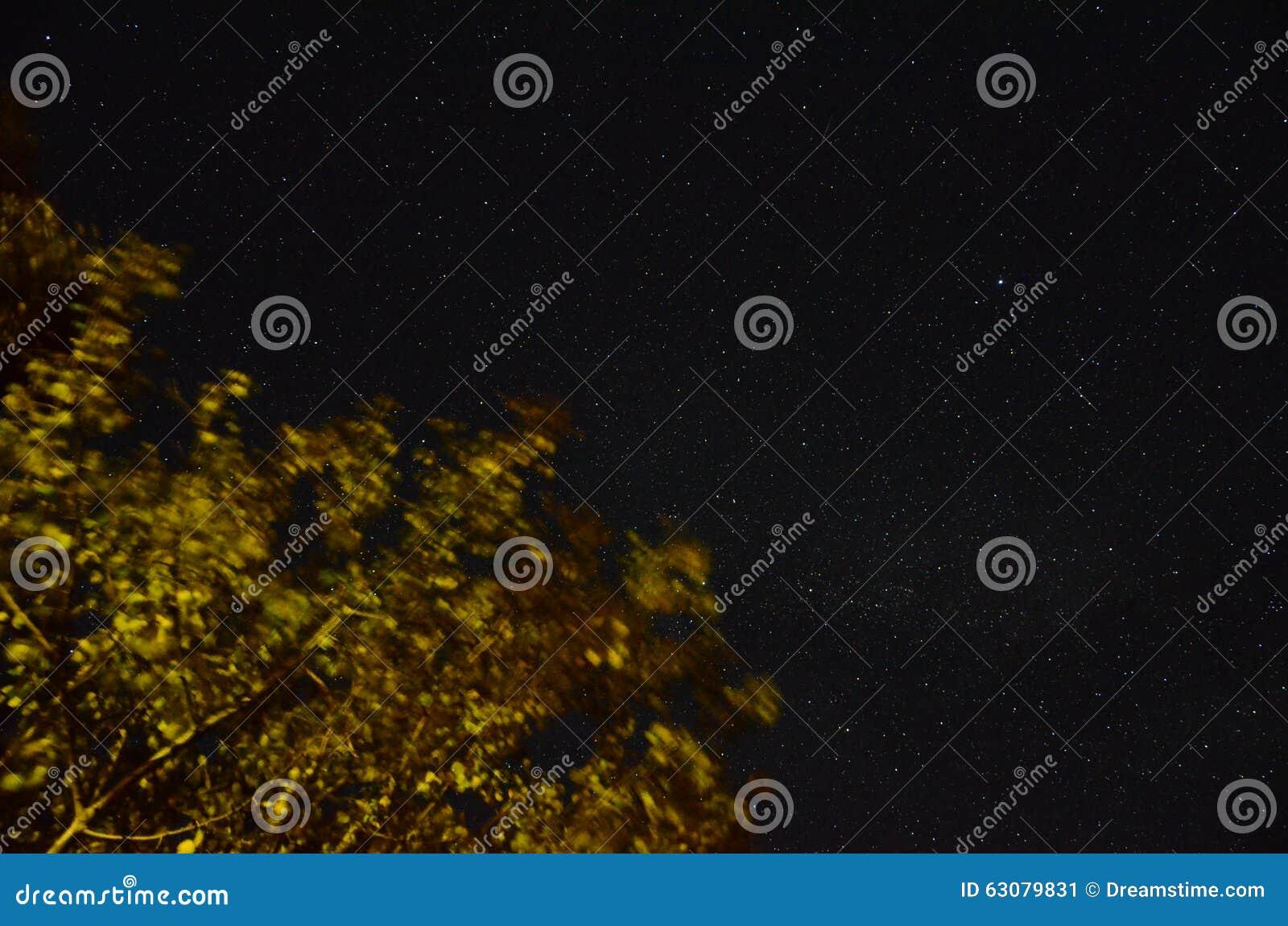 Download Minuit image stock. Image du brillant, star, laiteux - 63079831
