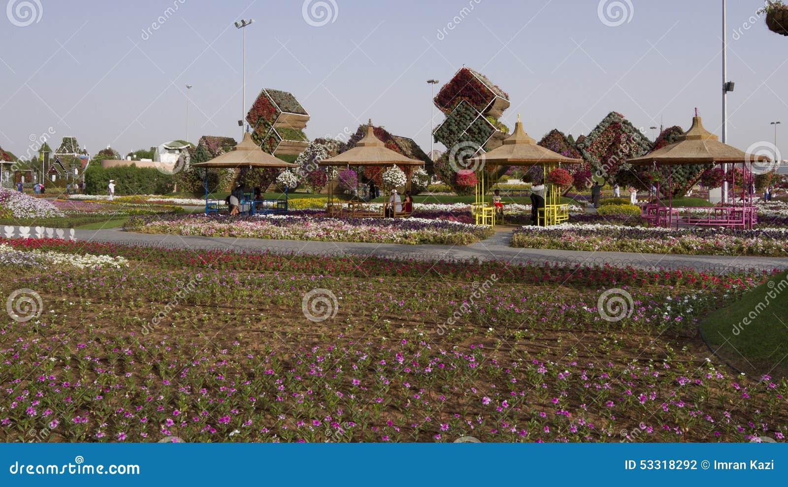 Miracle Garden - Dubai editorial photography. Image of flow - 53318292