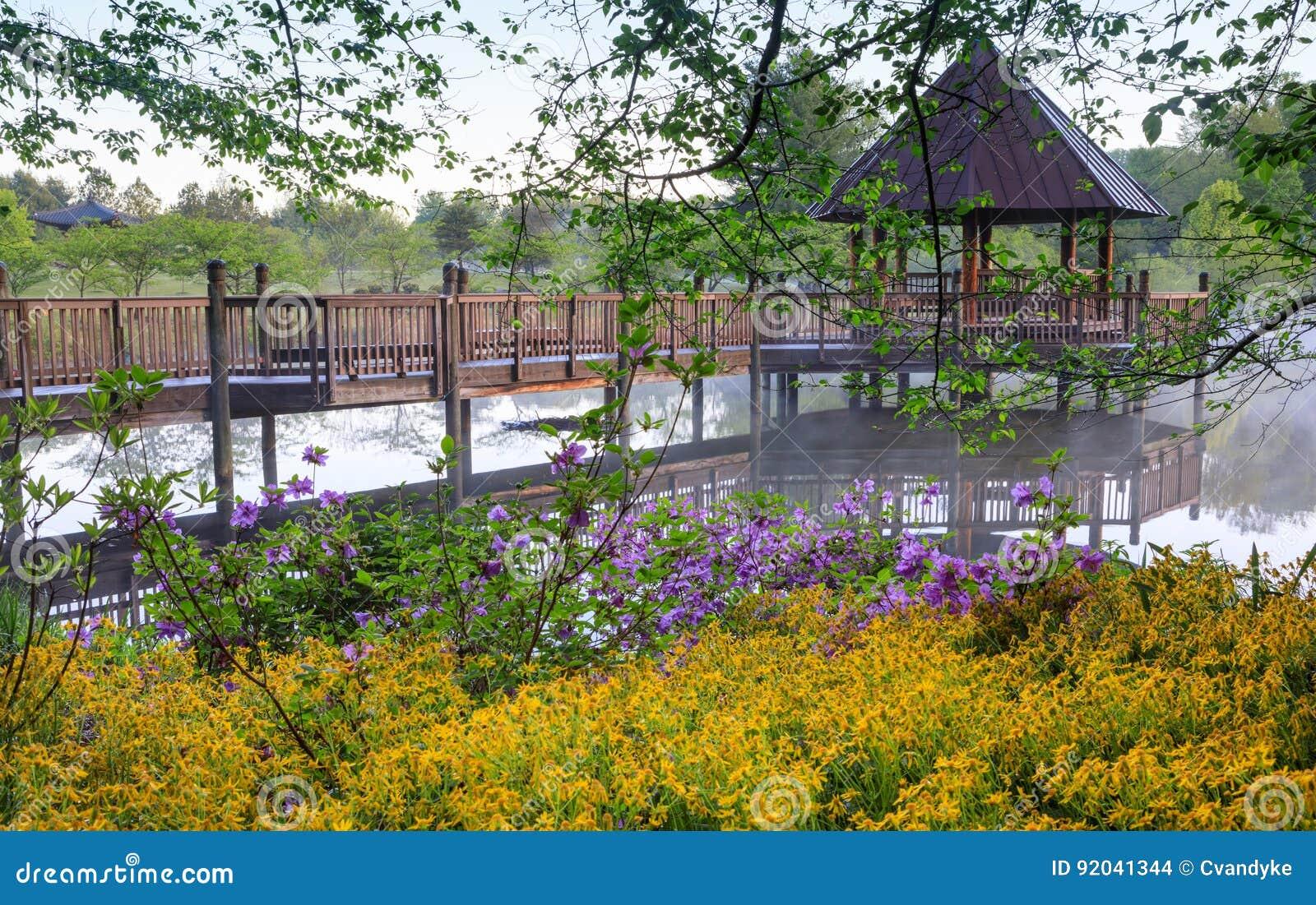 Miradouro no lago nevoento cercado por flores da mola