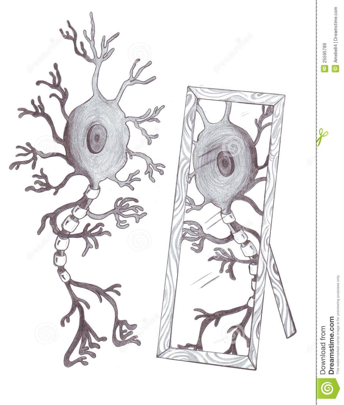 Mirror neuron stock illustration image of monochrome for Mirror neurons psychology definition