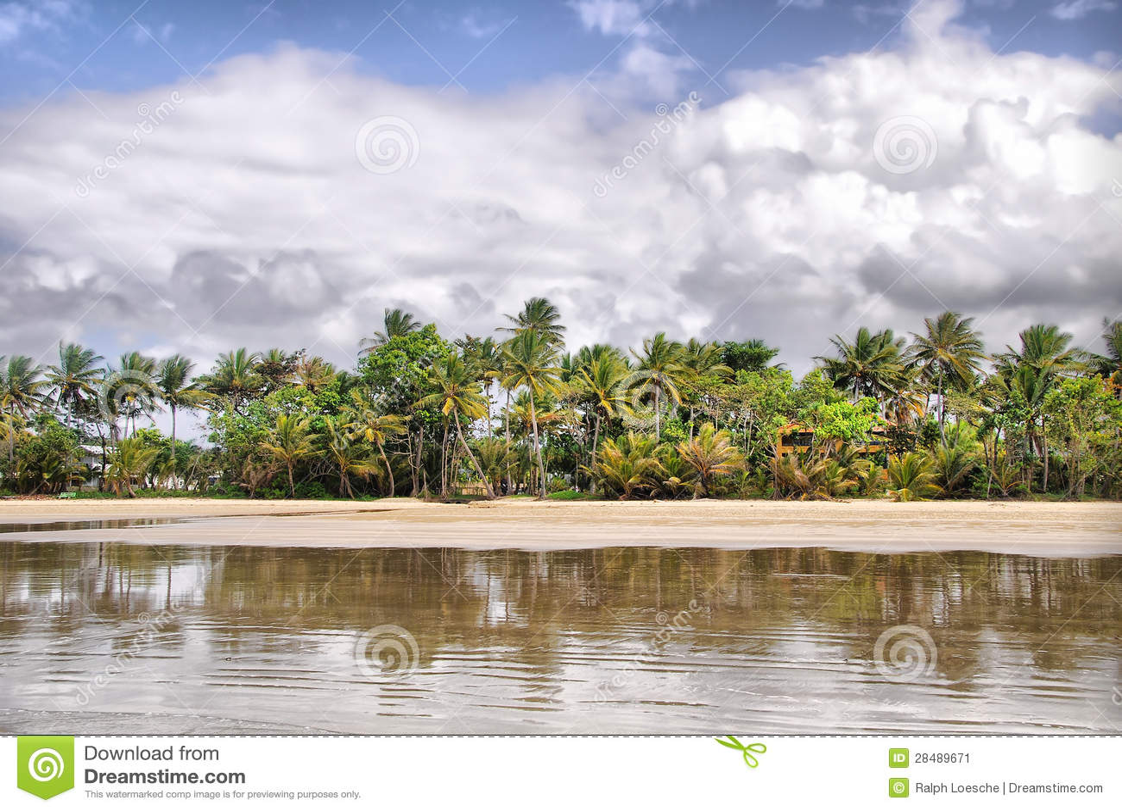 Misi plaża