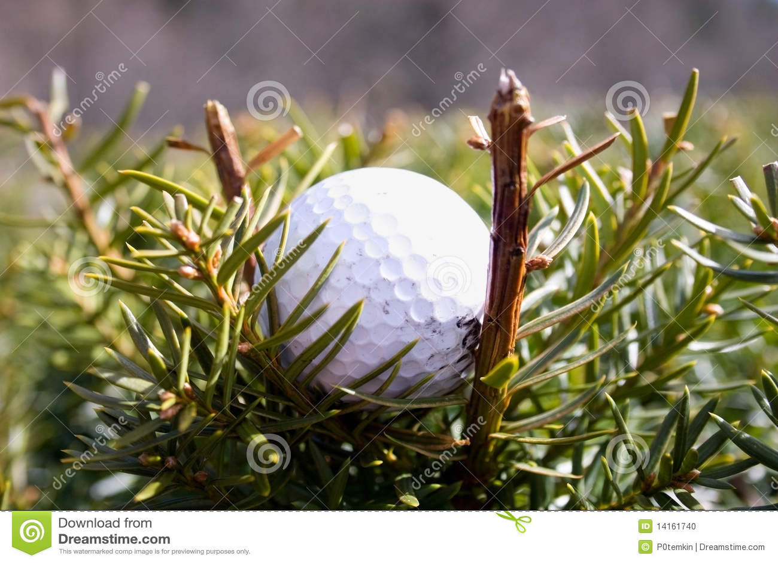 Misplaatste Golfball