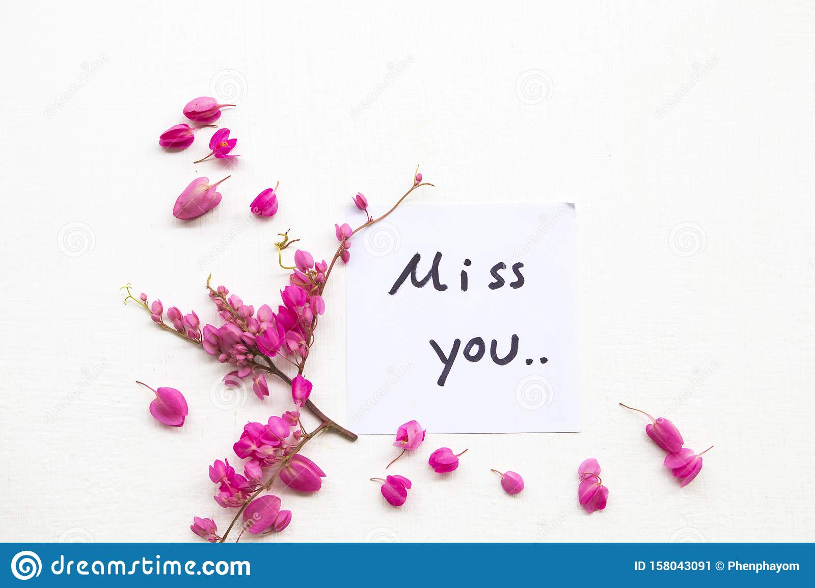 Miss You Card Flowers Photos Free Royalty Free Stock Photos From Dreamstime