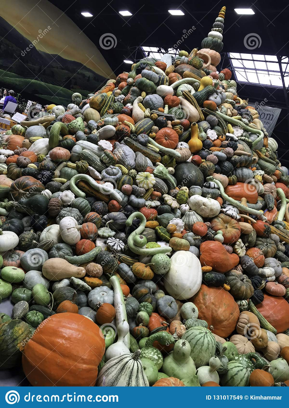 A stacked pile of squash and pumpkins at the 2017 National Heirloom Expo in Santa Rosa, CA