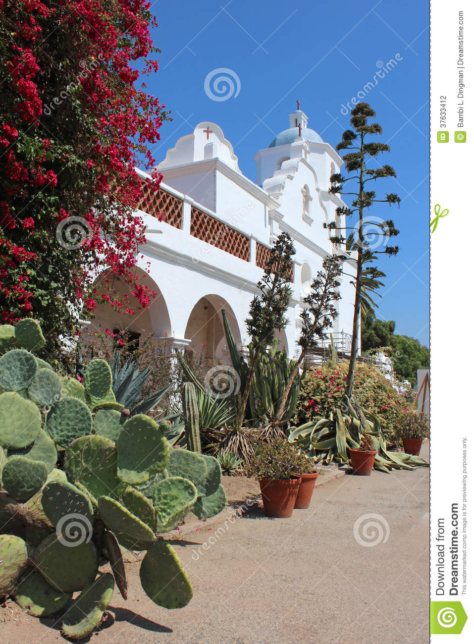 san luis rey girls San josé california missions  second in size only to san luis rey, mission san josé was practically  they wanted all indian girls put into one home under the.