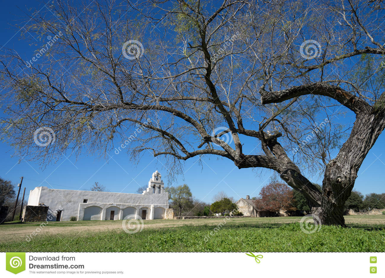 Misson de San Juan em San Antonio texas que behing uma grande árvore