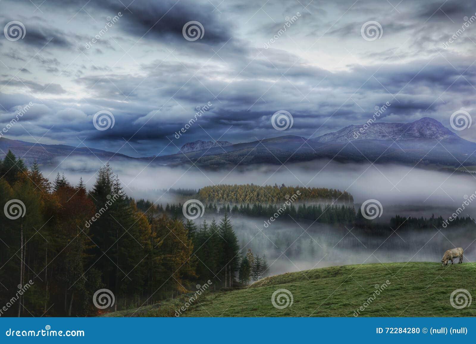 Mist behandelde vallei en bergen
