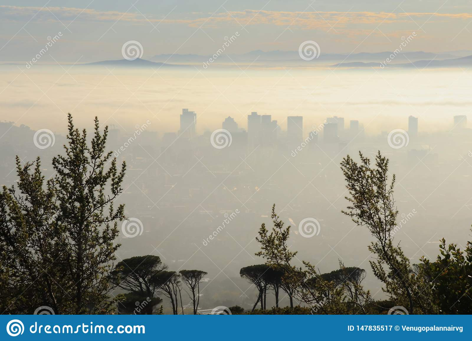 Mist covered city in the morning