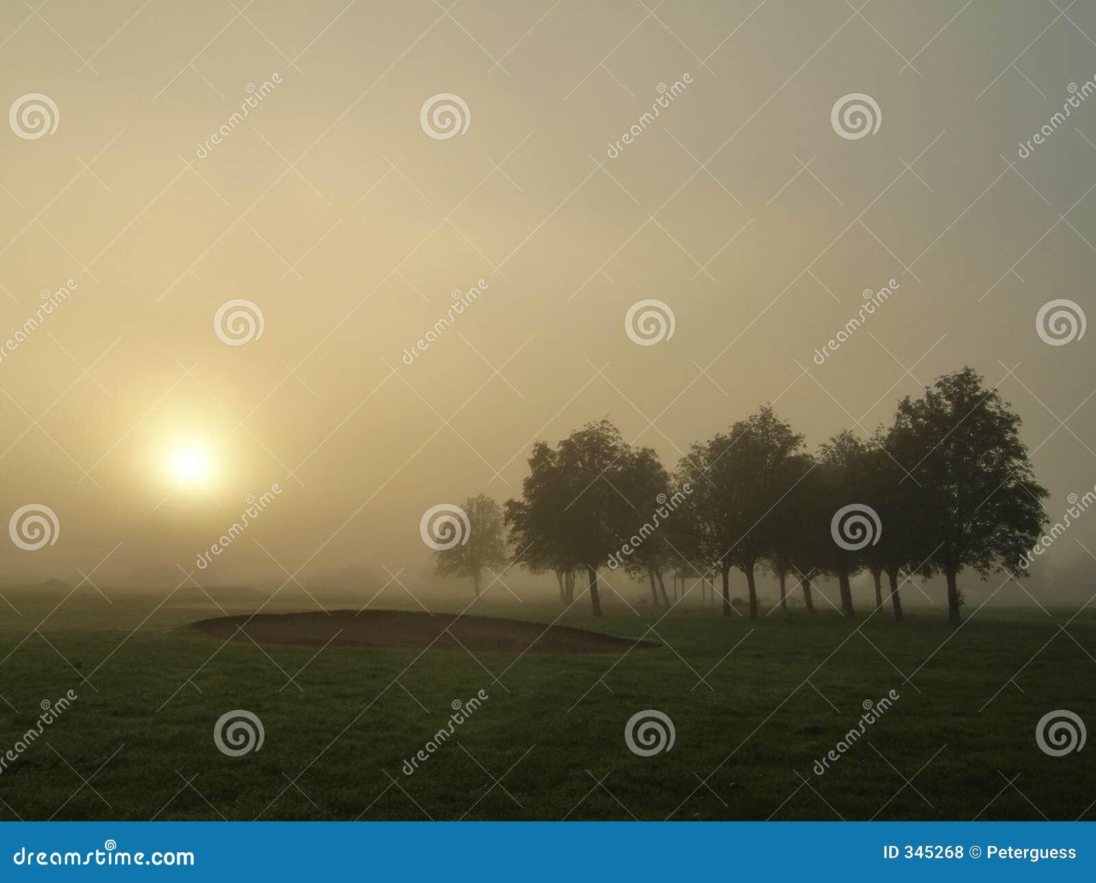Mist in Dawn