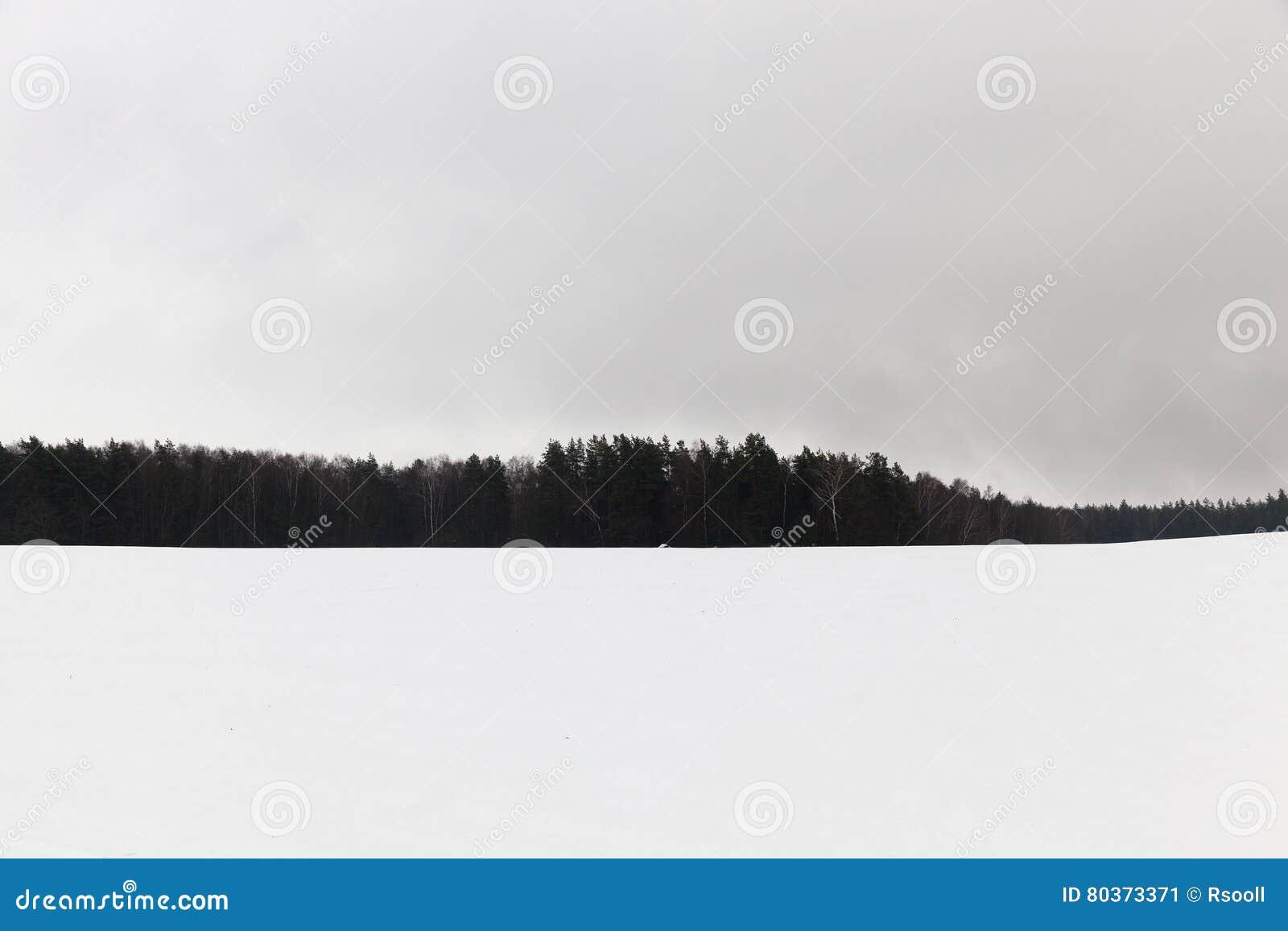 Mist in de winter