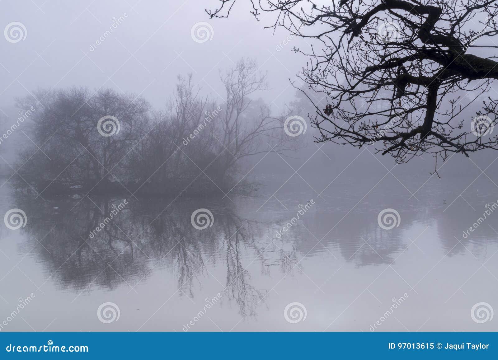 Mist on Southampton Common
