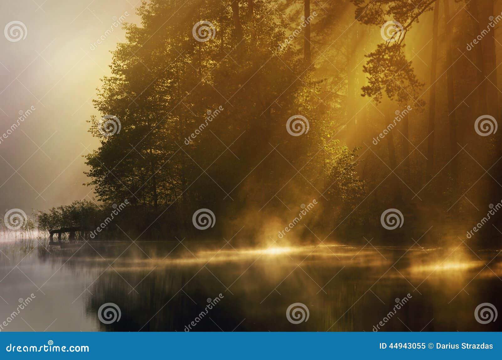 Mist van vroege ochtend