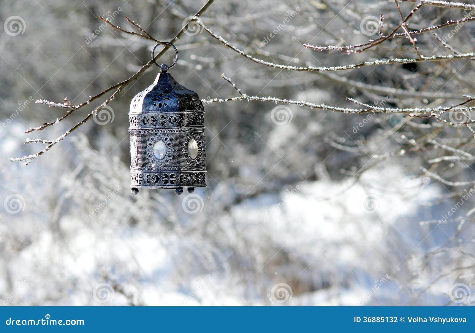 Download Mistero di inverno fotografia stock. Immagine di filiale - 36885132