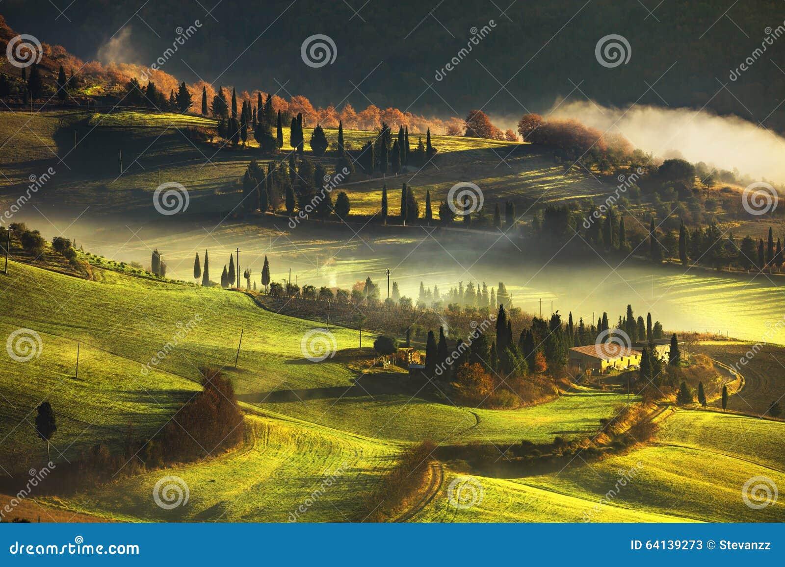 Mistige de ochtend, de landbouwgrond en de cipresbomen van Toscanië Italië