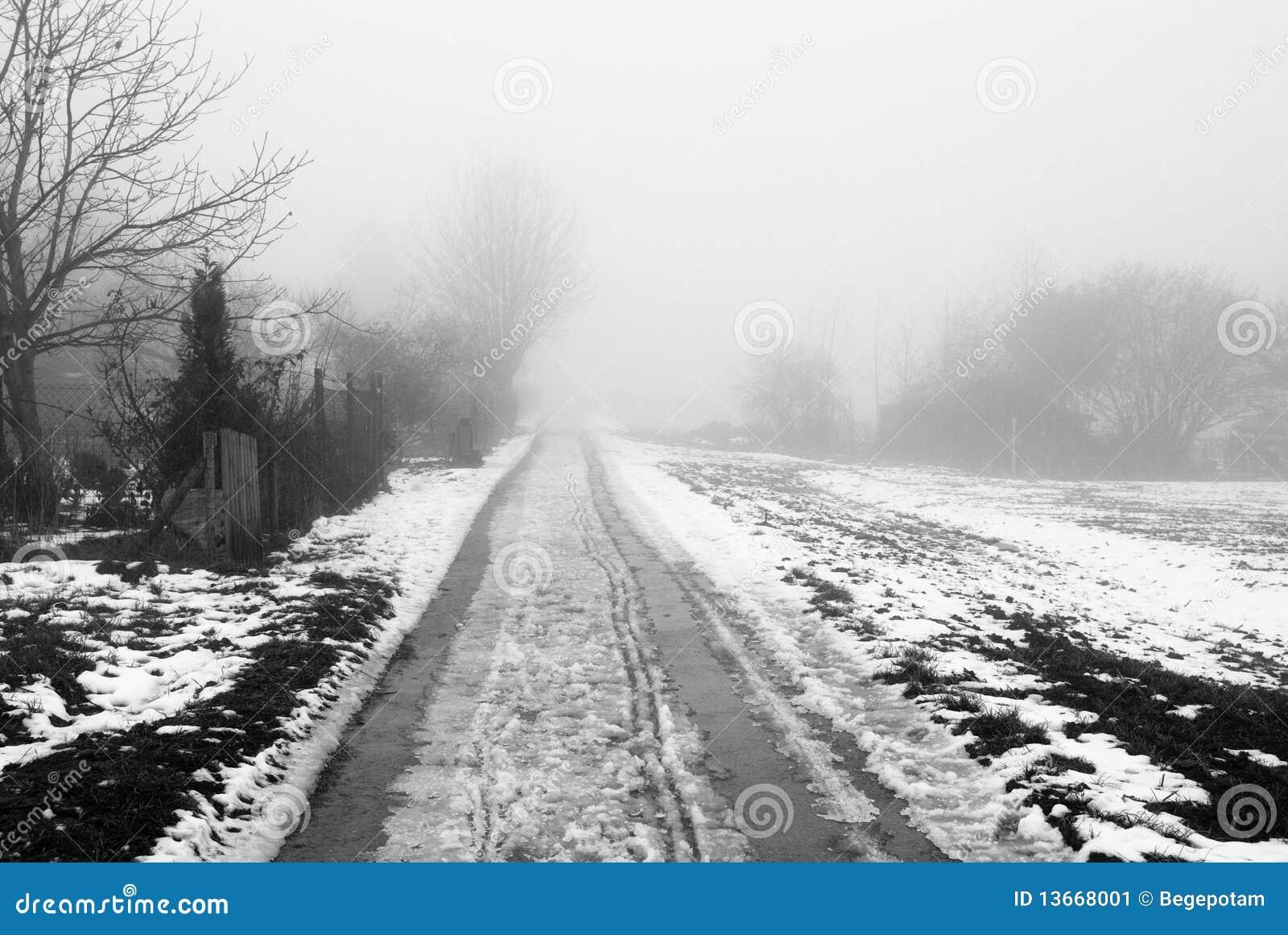 Mistige landelijke weg