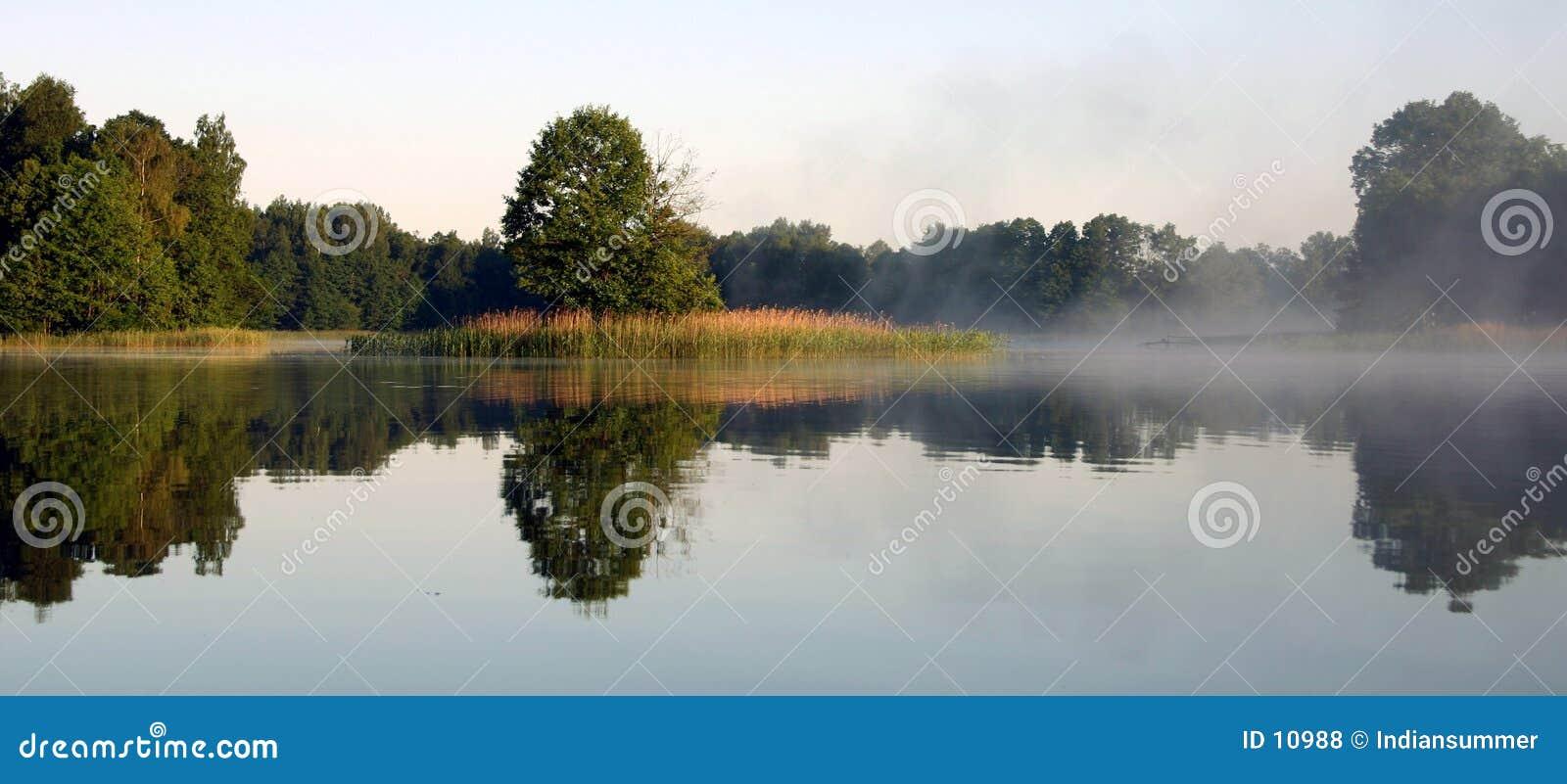 Mistige ochtend door het meer, V
