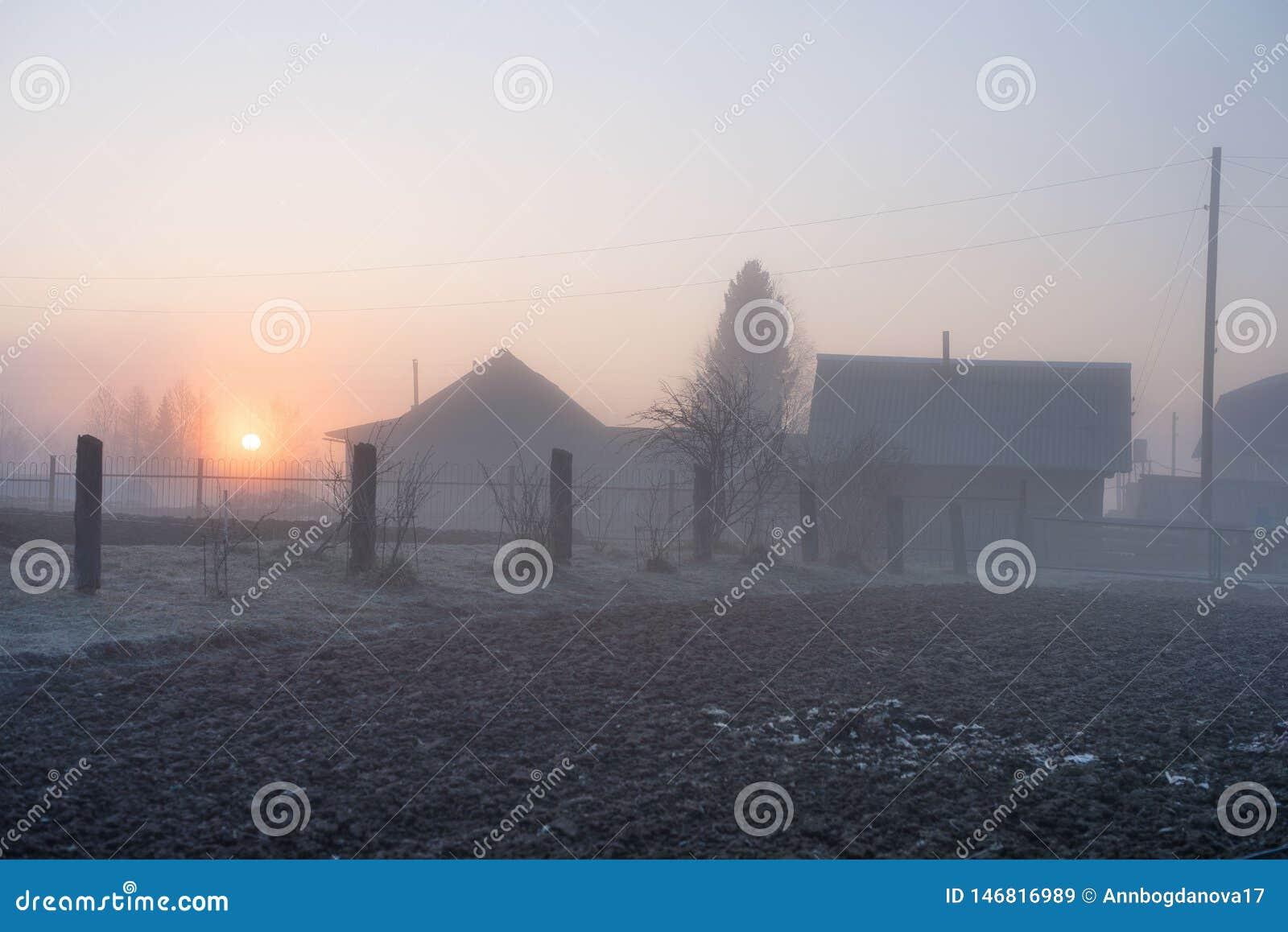 Mistige ochtend in het platteland