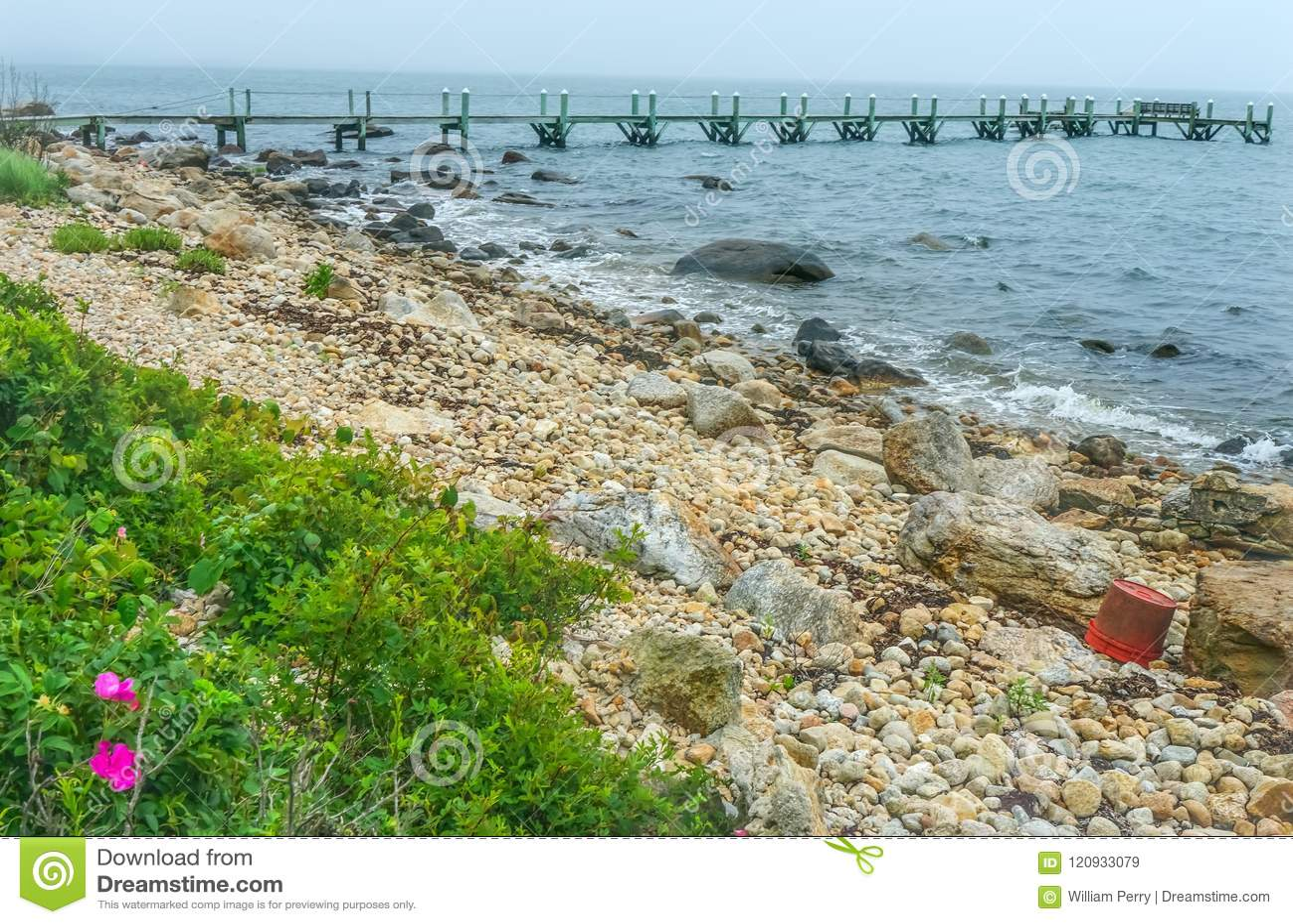 Mistige Ochtend Steenachtig Strand Pier Piink Roses Padnaram Dartmouth Ma