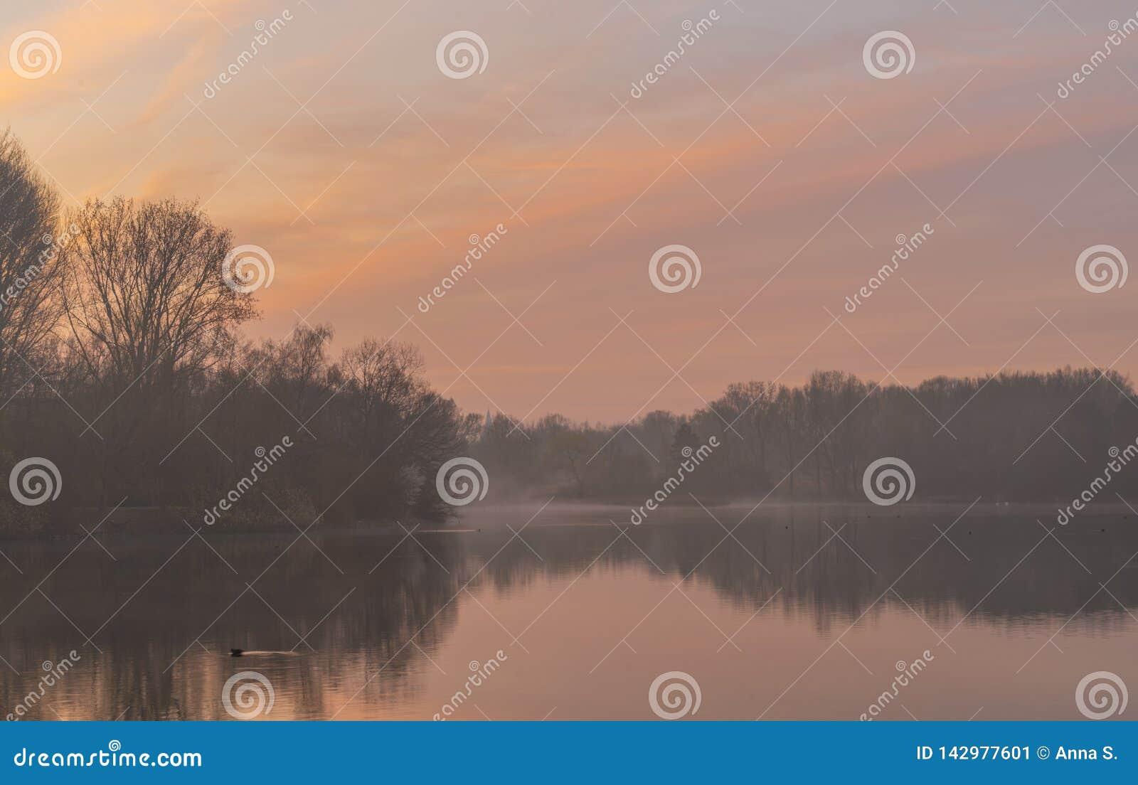 Mistige zonsopgang over meer