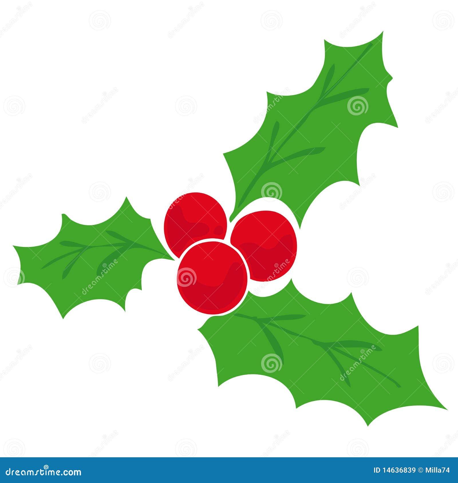 Mistletoe stock vector illustration of december autumn