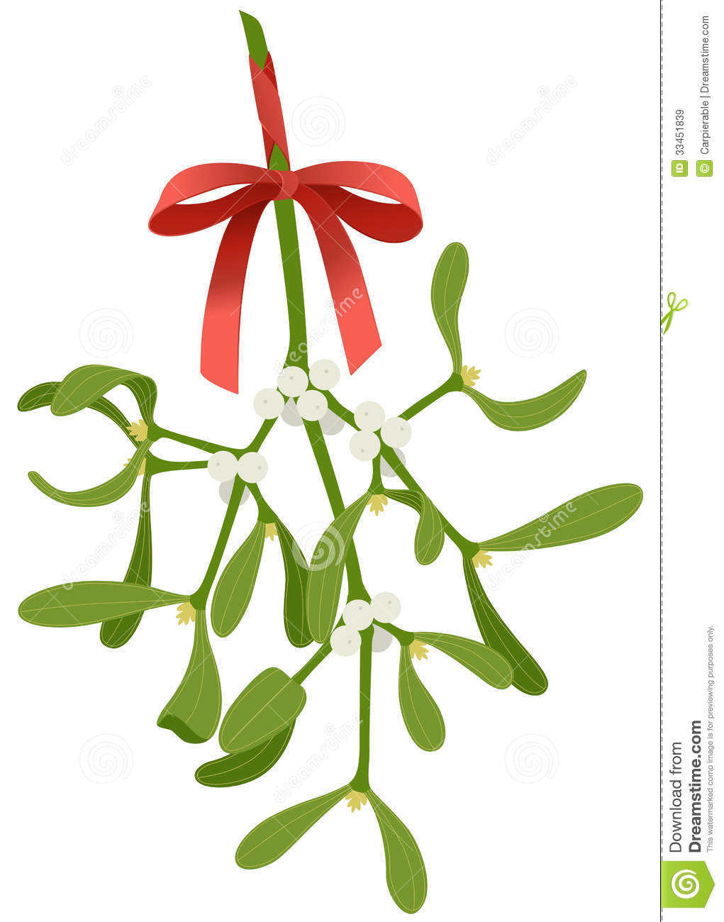 Mistletoe Twig Royalty Free Stock Images - Image: 33451839