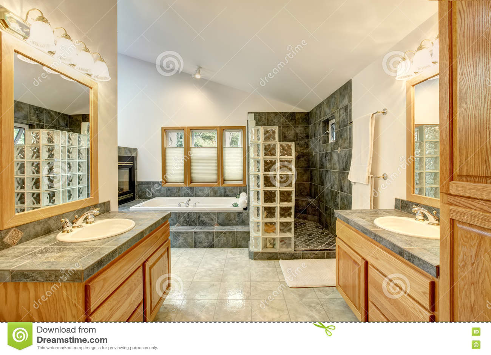 Mistrzowski łazienki wnętrze z dachówkową podłoga i nowożytnymi gabinetami