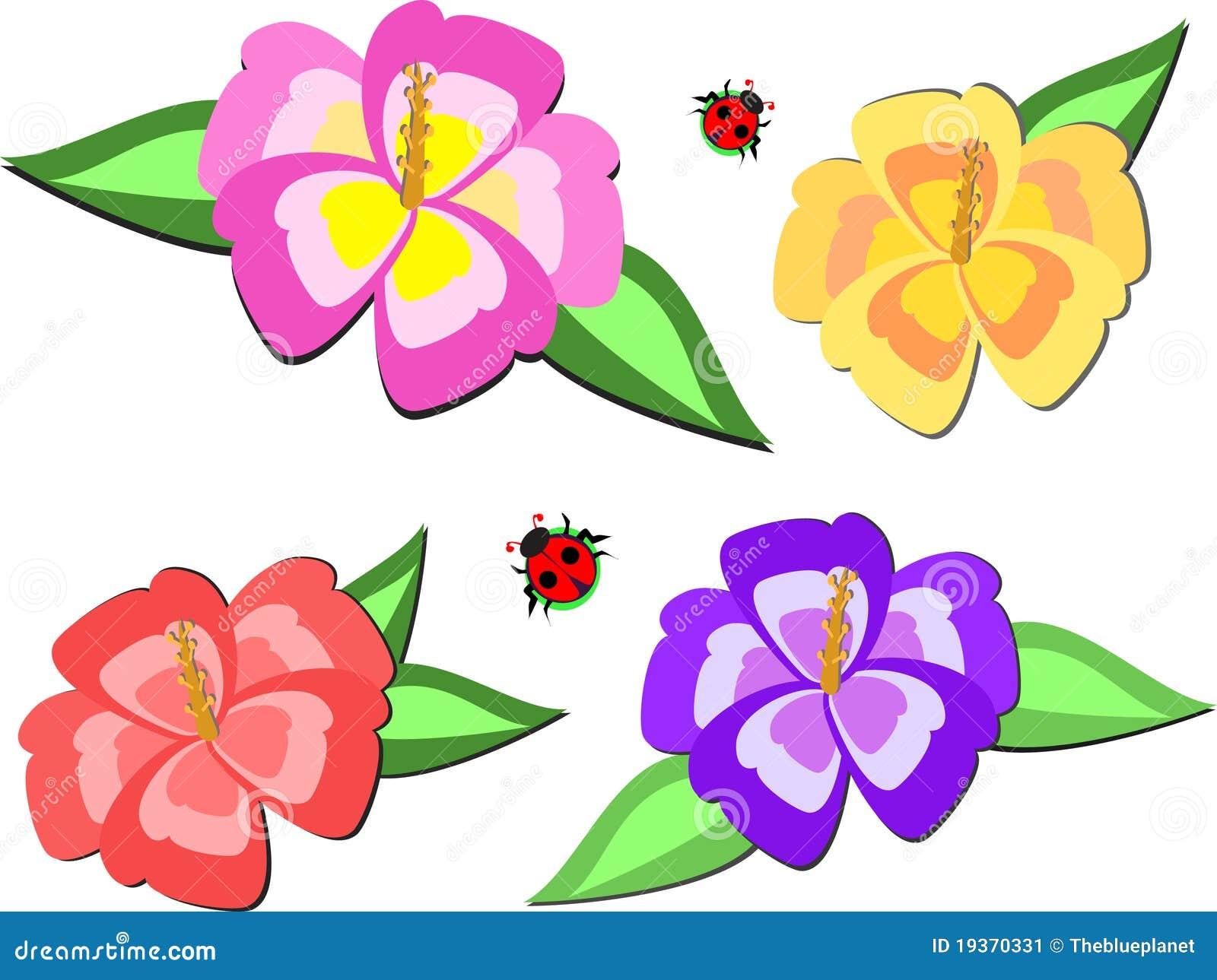 Mistura de flores e de Ladybugs do hibiscus