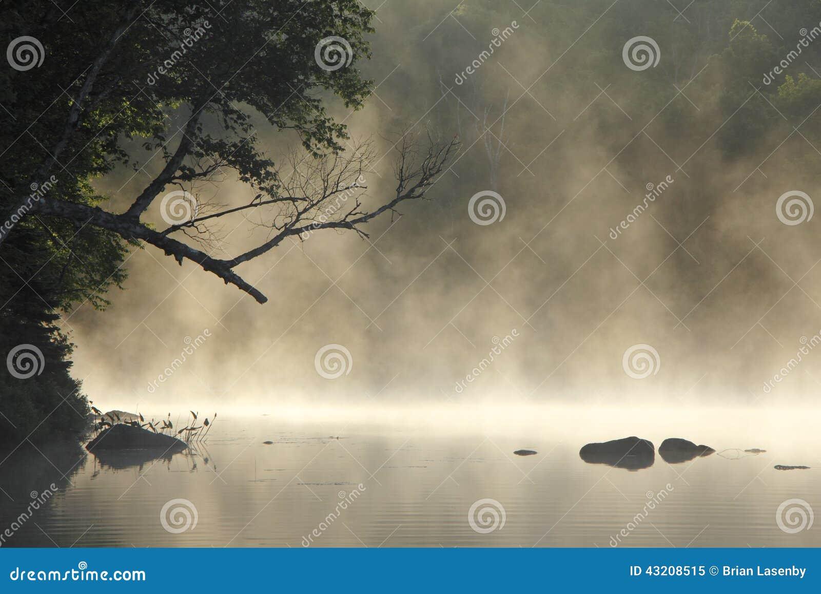 Download Misty Cove fotografering för bildbyråer. Bild av stillsamt - 43208515