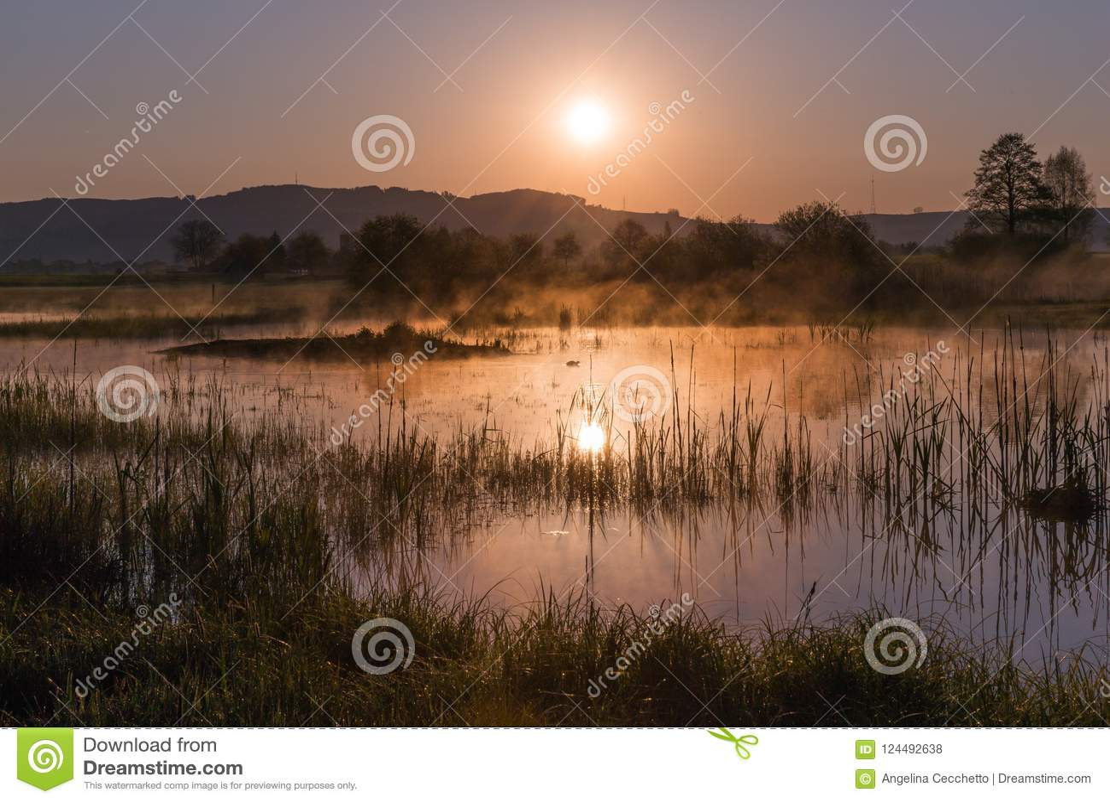 Misty Golden Sunrise Reflecting au-dessus de lac au printemps