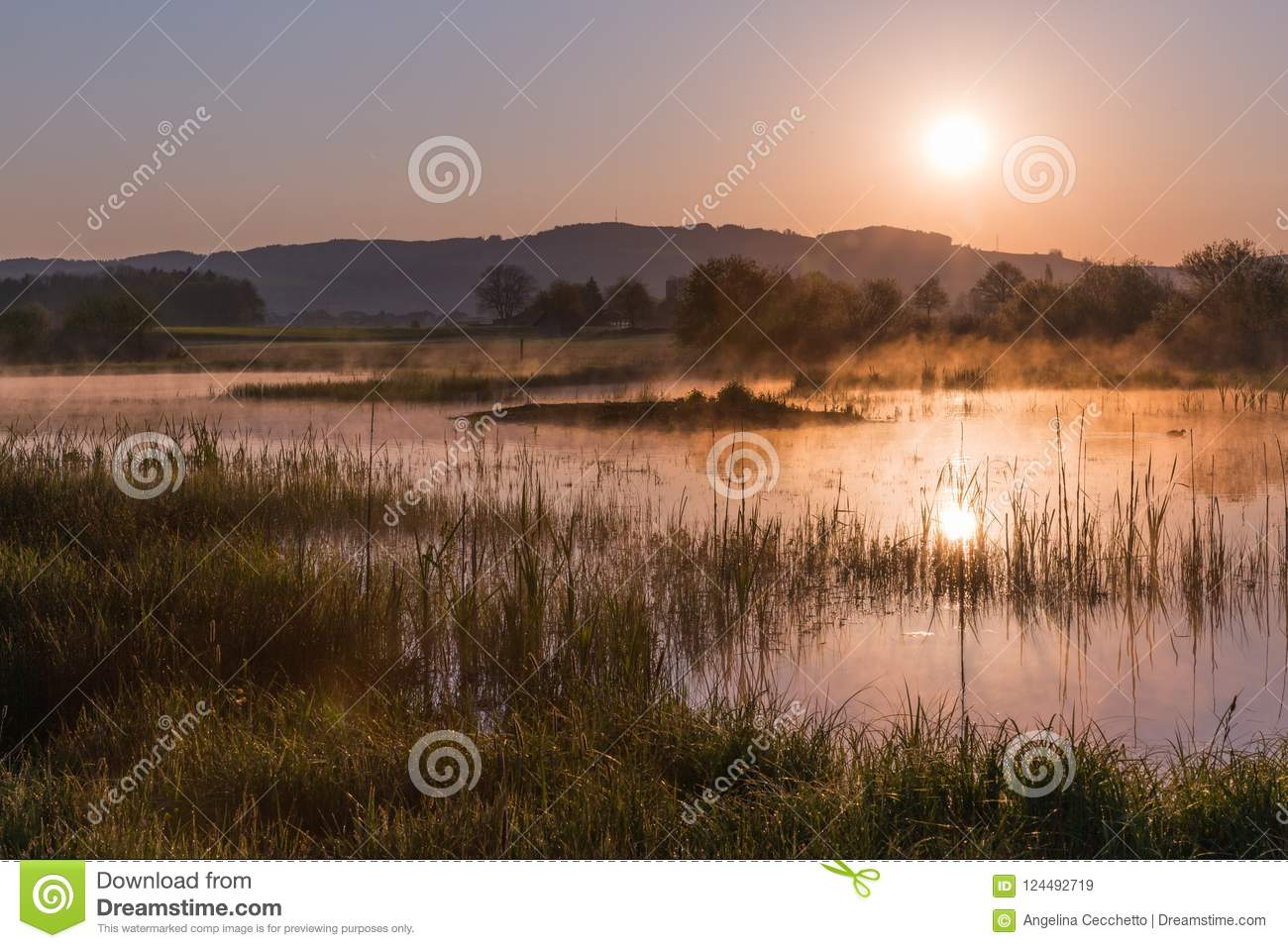 Misty Golden Sunrise Reflecting au-dessus de lac au printemps