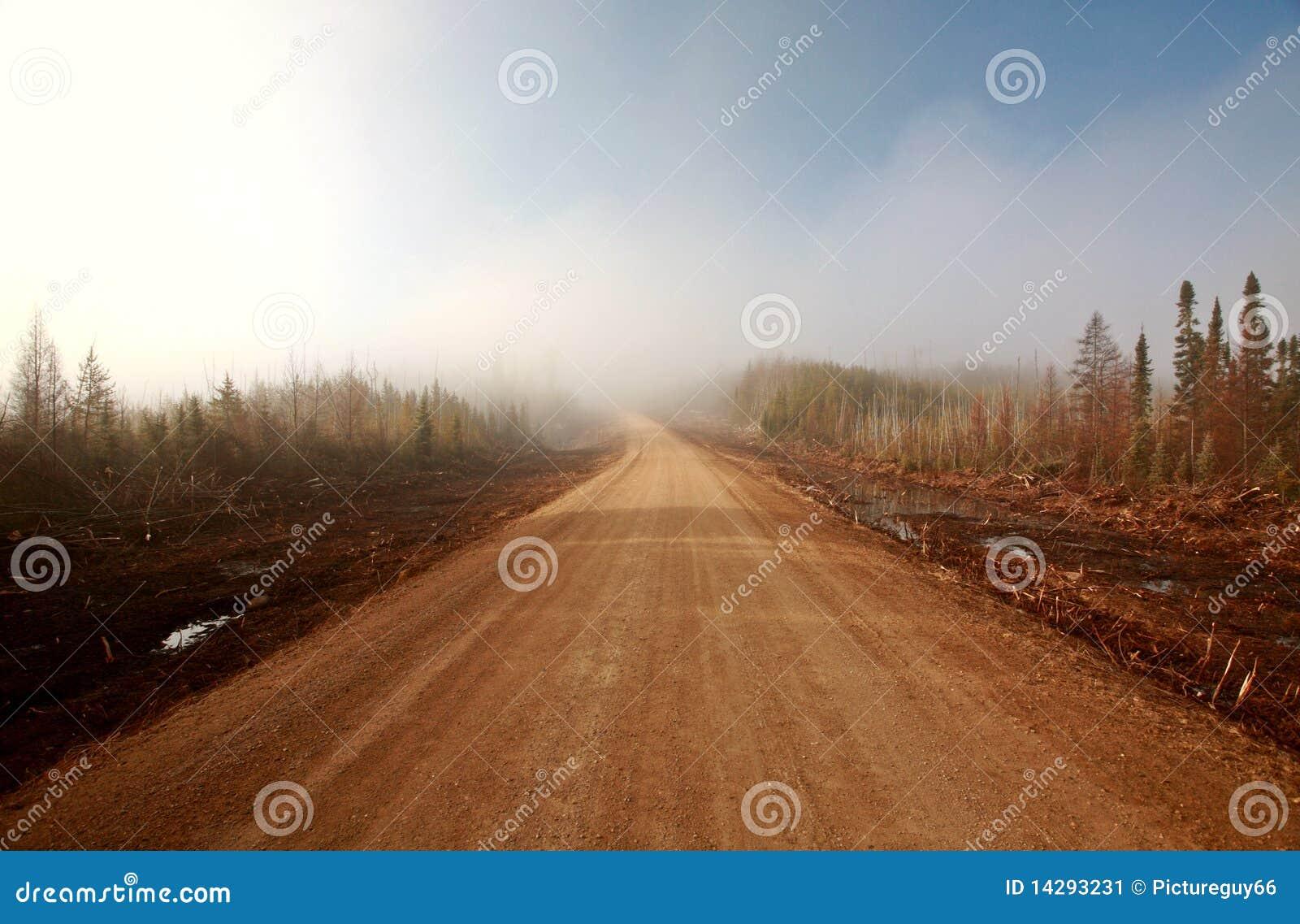 Stock image: misty morning road in spring saskatchewan