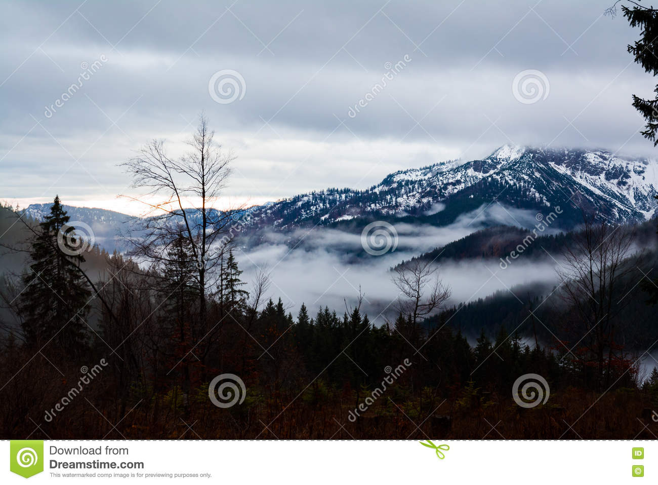 Misty Sunrise Landscape Mountains Trees Forest Hills Valley Morning Spitzingsee Alemanha
